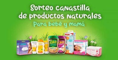 canastilla joven bebe de lets family gratis